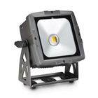 CAMEO  FLAT PRO FLOOD IP65 WW Outdoor Flood Light with 50 Watt Warm White COB LED